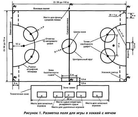 Правила игры хоккей с мячом